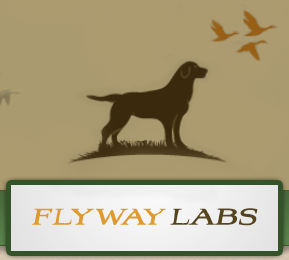 Flyway Labs